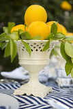 Lemons III Photographic Print by Karyn Millet