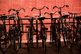 Bicycles at Centraal Station II Photographic Print by Erin Berzel