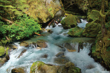 North Cascades NP I Photographic Print by George Johnson