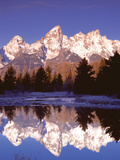 Grand Teton National Park XIII Fotografisk tryk af Ike Leahy