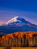 Mt. Adams III Photographic Print by Ike Leahy