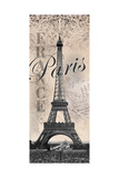 Eiffel Tower Prints by Todd Williams