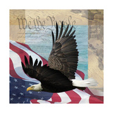 Freedom II Prints by Todd Williams