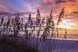 Ragged Sunrise III Photographic Print by Alan Hausenflock