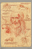 The Da Vinci Pot Code Posters