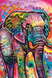 Dean Russo - Elephant Print by Dean Russo