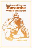 Harambe Treatment Plakaty