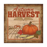 Nostalgic Harvest II Posters by Todd Williams