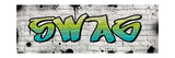 Swag Graffiti Photographic Print by N. Harbick