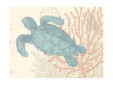 Sea Turtle Prints by N. Harbick