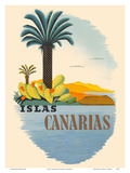 Islas Canarias (Canary Islands) - Palm Trees and Cactus Art by  Pacifica Island Art