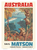 Australia - Sail Matson - SS Mariposa, SS Monterey - Matson Navigation Company Art by Louis Macouillard