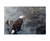 Freedom Haze Photographic Print by Steve Goad