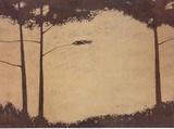 Grove Prints by Robert Charon
