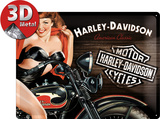 H-D Biker Babe Red Tin Sign