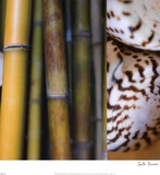 Bamboo II Posters by Jennifer Broussard