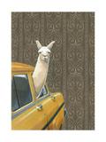Taxi Llama Poster por Jason Ratliff