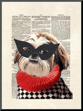 Shihtzu Mounted Print by Matt Dinniman