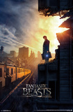 Fantastic Beasts And Where To Find Them Posters