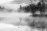 Fog on the Lake 2 Photographic Print by Sally Linden