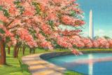 Washington Dc Posters by Alan Paul