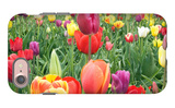 Tulips iPhone 7 Case by  Lantern Press