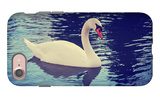 Mute Swan, Cygnus Olor, Single Bird on Dark Water Toned with a Retro Vintage Instagram Filter Effec iPhone 7 Case by  graphicphoto