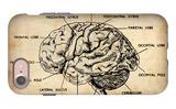 Vintage Brain Map Anatomy iPhone 7 Case by  NaxArt