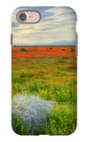 Wildflowers near Lancaster, California iPhone 7 Case by Vincent James