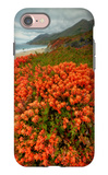 Summer Morning Coastal Color iPhone 7 Case by Vincent James