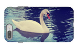 Mute Swan, Cygnus Olor, Single Bird on Dark Water Toned with a Retro Vintage Instagram Filter Effec iPhone 7 Plus Case by  graphicphoto