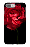 Red Ranunculus iPhone 7 Plus Case by Magda Indigo