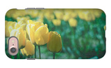 Yellow Tulip Field iPhone 7 Case