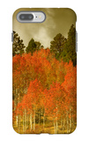 Portrait of Aspens in Autumn iPhone 7 Plus Case by Vincent James