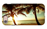 Bimini Sunset iPhone 7 Case by Susan Bryant