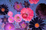 Colorful Floral Design Photographic Print by Alaya Gadeh