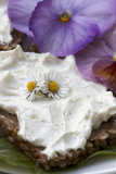 Bread with Herb Curd and Flower Decoration, Close-Up Photographic Print by Manuela Balck