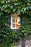 House, Detail, Window, Covered Photographic Print by Nora Frei