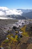 Argentina, Patagonia, the Andes, National Park Nahuel Huapi, Monte Tronador Photographic Print by Chris Seba