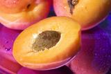 Apricot, Halves, Core, Close Up Photographic Print by Manuela Balck