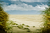 Germany, Schleswig-Holstein, Amrum, Sandy Beach, Sandbank, Kniepsand Photographic Print by Ingo Boelter