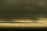 Germany, Schleswig-Holstein, Amrum, Sandy Beach, Sandbank, Stormy Atmosphere Photographic Print by Ingo Boelter