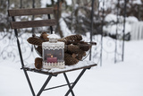Chair in the Snow with Wintry Still Life Photographic Print by Andrea Haase