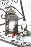Chair in the Snow with Christmassy Still Life Photographic Print by Andrea Haase