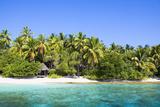 Frank Lukasseck - The Maldives, Sea, Palms, HŸtte (Hut) Fotografická reprodukce