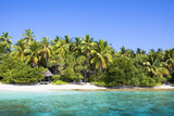 The Maldives, Sea, Palms, HŸtte (Hut) Photographic Print by Frank Lukasseck