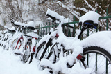 Germany, Berlin, Bicycles, Snowy Photographic Print by Catharina Lux