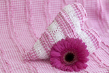 Rose Gerbera Blossom with Heart Made of Fabric Photographic Print by Andrea Haase