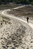 Lithuania, Curonian Spit, Perwalka, Drifting Sand Dune, Path Photographic Print by Catharina Lux