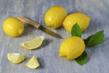 Whole and Sliced Lemons on Grey Subsoil Photographic Print by Jana Ihle